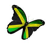 Drawing of Jamaican flag butterflies, isolated on white background ...