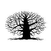 vecchio albero, nudo, silhouette, per, tuo, disegno