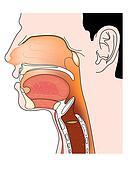 throat clip art Deep