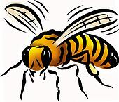 Flyve insekter illustrationer og clipart